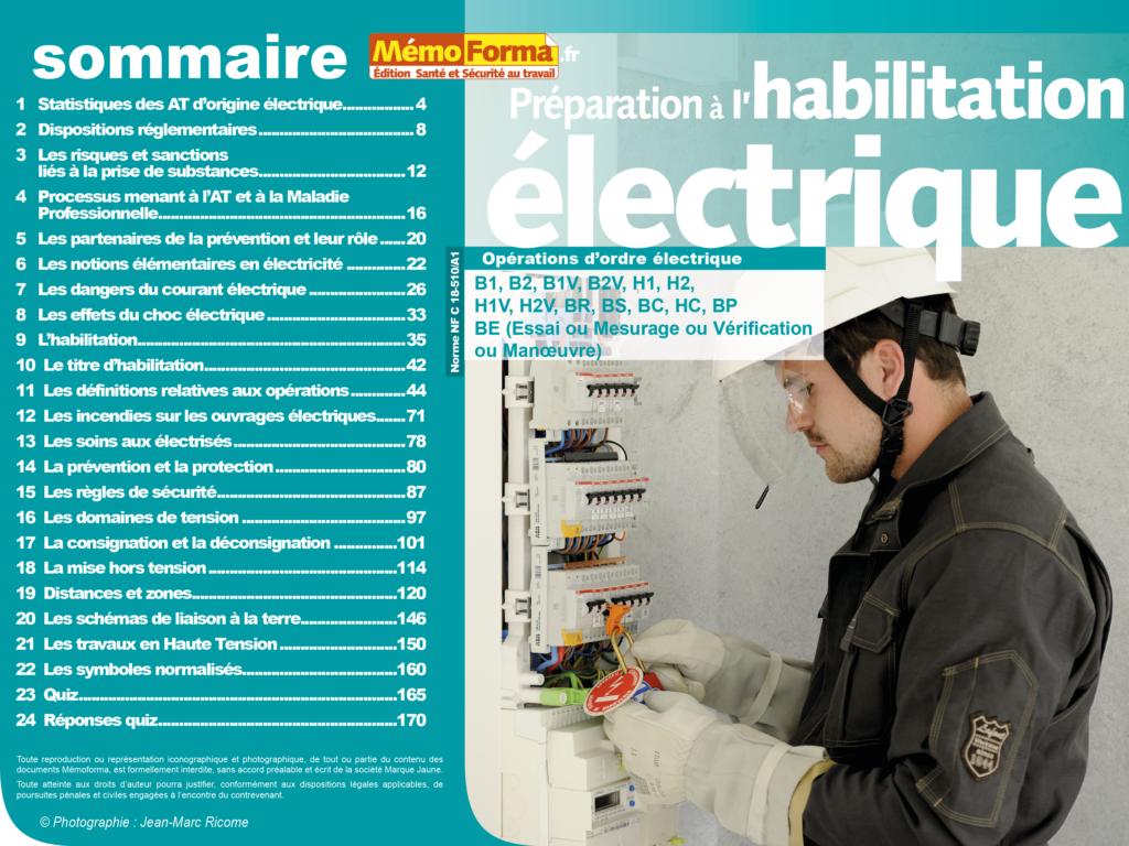 Support formateur – Préparation à l'habilitation électrique pour les opérations d'ordre électrique- MémoForma.fr